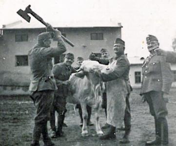 Kárpátalja - a pörkölt alap - II. világháború