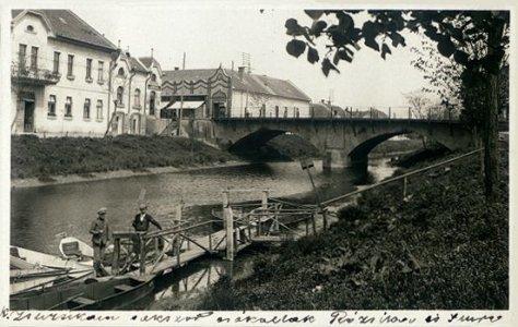 eloviz_korospart_1889