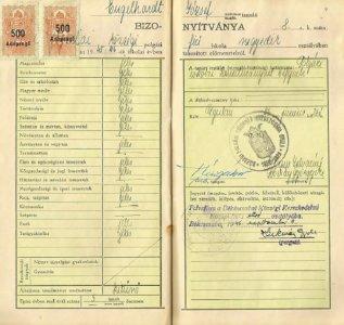 Engelhardt József tanulmányi értesítő – 1956