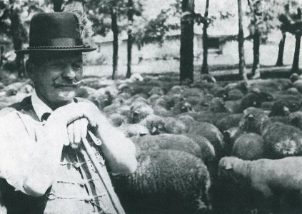 Tsz-ben dolgozó juhász - 1960-as évek vége