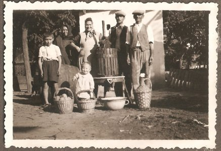 21_szuret_gyulan__nemetvaroson_1950